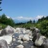 山林バンクで山を買おう!アクセスの難しさは最上級、難攻不落の土地。[土地探し14]