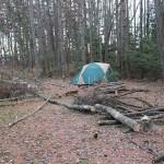 伐採後の木の整理と片付け~人力で動かせない木を「コロ」で動かす