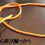 もやい結びの結び方と末端処理(詳細写真つき)~伐採のロープワーク