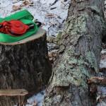 受け口・追い口の精度を高める~狙った方向へ木を倒すために