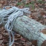 枝のない木にロープを掛ける方法を漫画で解説してみた。